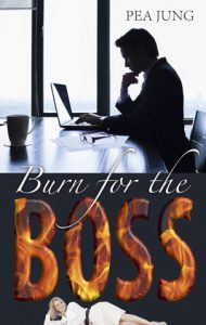 Cover: Burn for the Boss