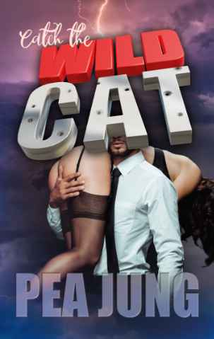 Cover: Catch the wildcat